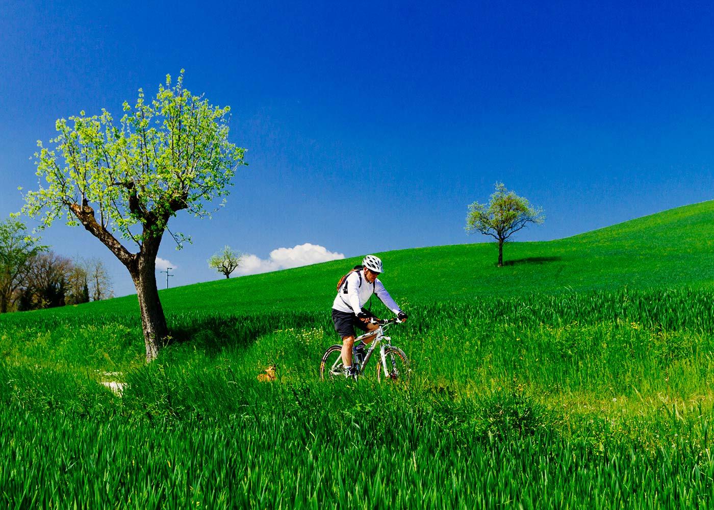 Mountain bike In Tuscany