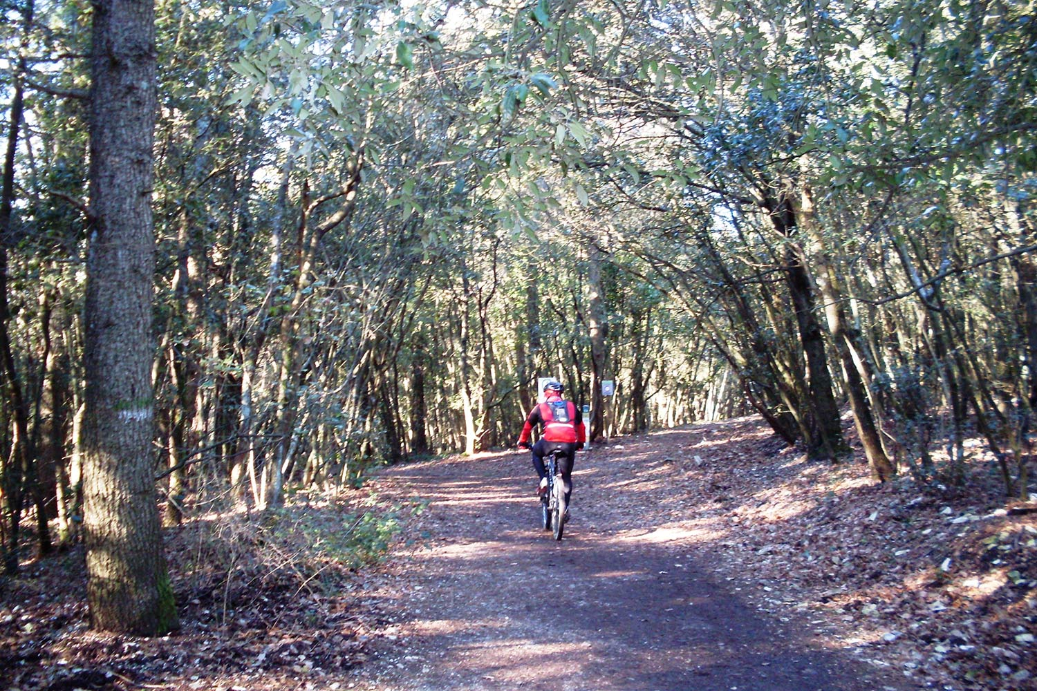 Mountain bike on Monte cOnero