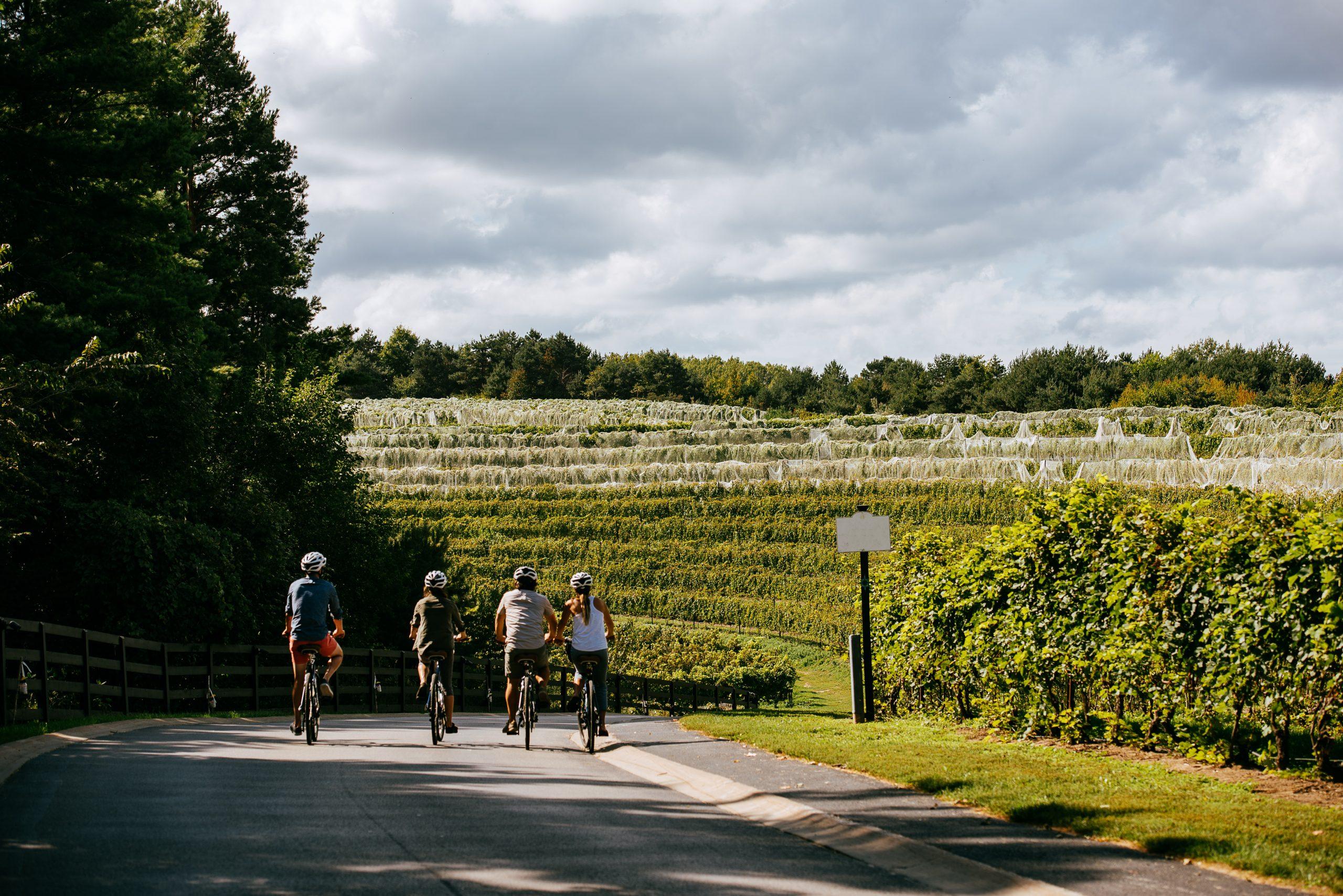 altarocca wine resort - umbria